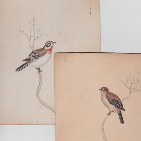 A set of Japanese Watercolours