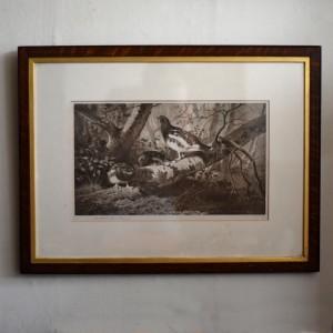 Ptarmigan by Thorburn